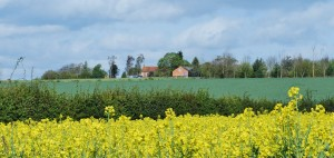 Kingham Farm Apr12