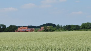 Millennium Hall & Carrington Arms across wheat fields